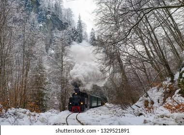 Winter Narrow Gauge Steam Train Romania