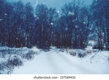 Winter natural landscape with lane through the dark misty forest