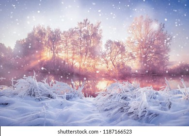Winter nature landscape in snowfall. Snowy and frosty trees in morning sunlight. Christmas background.
