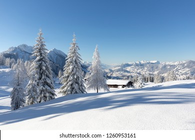 Winter nature. Landscape with snowy forest and traditional alpine chalet. Sunny frosty weather with clear blue sky