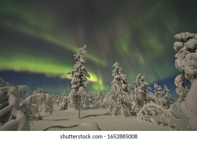 A winter night in Finish-Lapland in the Pyhä-Luosto National Park: Minus 24 degrees Celsius over the Keski Luosto Hill. Intensive Northern Lights over the winterly landscape under moonlight.