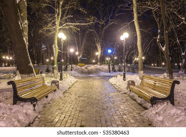 Winter night landscape- bench under winter trees and shining street lights under winter falling snowflakes. Colorful night scene with falling snow in the deserted night park