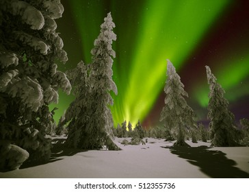 winter night landscape with forest and polar northern lights tromso norway norwa
