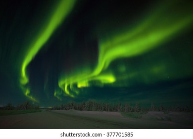Winter night landscape with polar light, forest and road. Road, winter, Alaska, northern lights