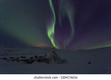Winter night landscape with sledges, tent and aurora in the sky. The Yamal Peninsula. Russia