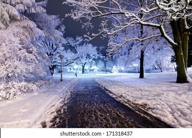 Winter night park in Old Riga, Latvia close to Bastion hill