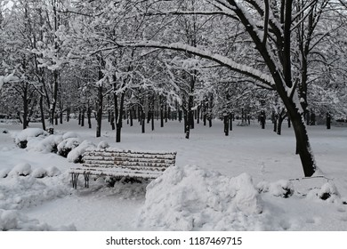 Winter in the old park. Trees and benches in the city park are covered with an abnormally large snow.