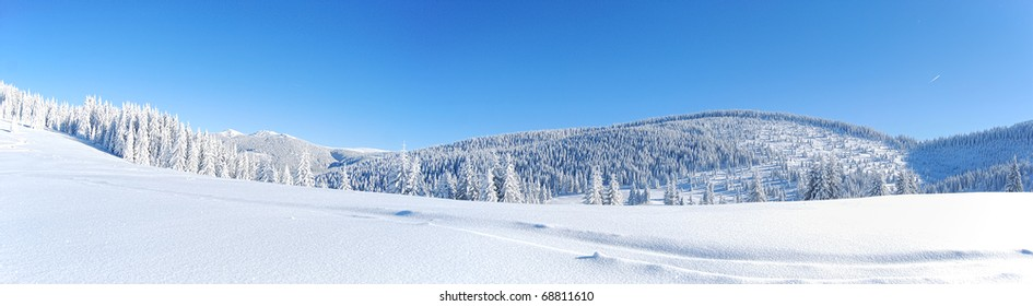 winter panorama