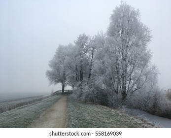Winter panorama, frost on the trees