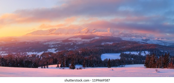 Winter panorama. Winter morning. Winter background. Panoramic landscape of mountains covered by snow early in morning. Pink sunlight illuminates white hills and forest.