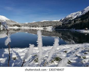 winter panorama in switzerland, europe
