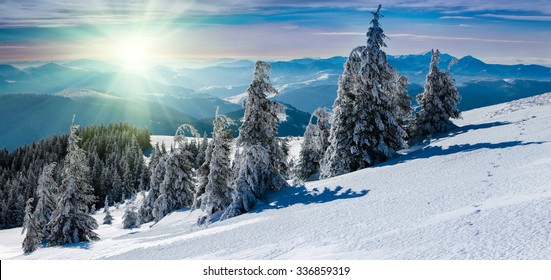 Winter panoramic landscape in mountains. Snow covered trees and mountain peaks in the distance with sunlight.