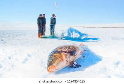 In winter, people catch fish from under the ice on the Cildir Lake. Fishing is a popular activity among the local people, Kars