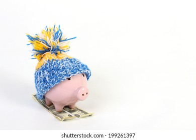 Winter piggy bank with hat pom-pom standing on skies of greenback hundred dollars on the white background