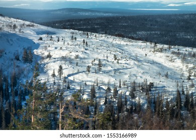 Winter polar mountain expanses from a height. Mountain coniferous forest in winter in Sunny weather. The area of white sea coast