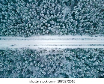 Winter. Railroad covered by the snow