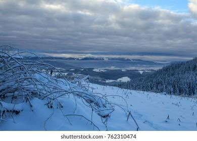 Winter rime and snow covered landscape Carpathian Mountains, Ukraine