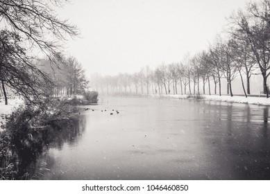 Winter River Apeldoorn with birds