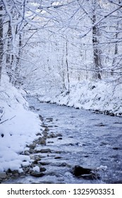 Winter river in the calm forest, trees covered with snow and small river flow landscape. A nice place for meditation flowing water sound in the background.