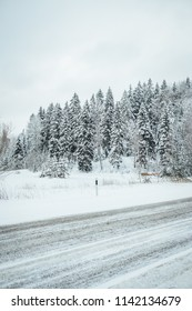 Winter road, car road surrounded with pine forest, freezing winter time