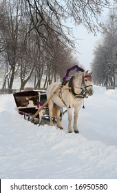 Winter road with a horse.
