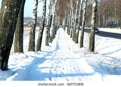 Winter. Winter road through snowy fields and forests. Winter road surrounded by snow-covered trees
