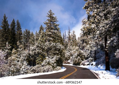 Winter road through snowy forest of Yosemite national park.