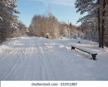 Winter road through snowy forests