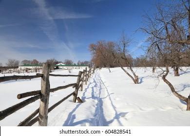 Winter rural landscape.