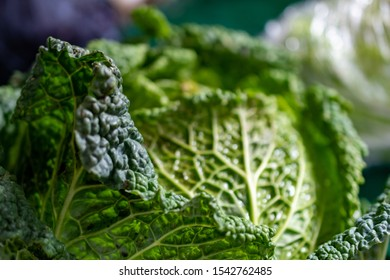 Winter savoy cabbage at a local farmers' market. It is framed by more winter vegetables