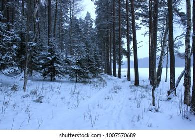 Winter in Scandinavia