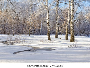 Winter scene 2. Solar winter landscape. The trees covered with snow. Stream and birches. Photowall-paper.