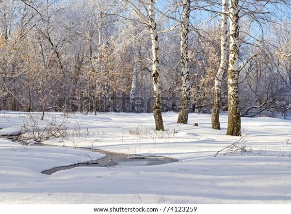 winter-scene-2-solar-landscape-600w-7741