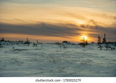 A winter scene of a barren land covered in snow at sunset. The sky is cloudy with orange shades and shadows from the setting sun. There are a few trees and grass growing among the snow and ice.