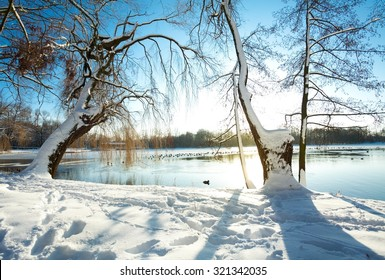 Winter scene in Belgium by the lake - sun reflection on the ice covered lake.