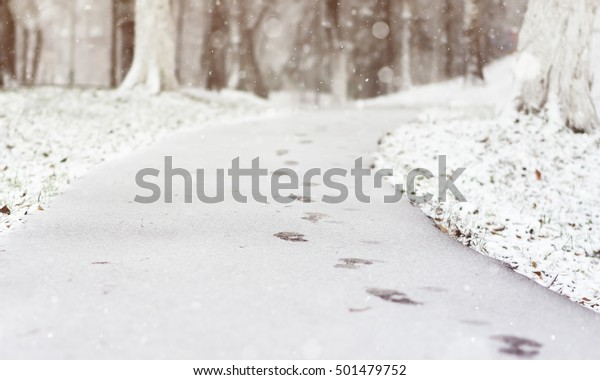 Winter Scene with blurred nature background. Footprints in the snow in the City Park. Winters blurred background.