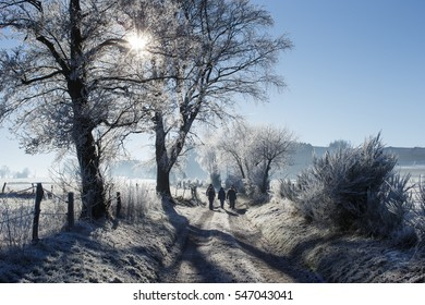 winter scene country road