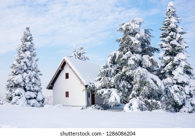 Winter scene, rural house and snow pine trees - Shutterstock ID 1286086204