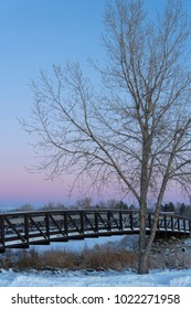 Winter scene of snow covered footbridge against soft pastel colors sunrise sky with large leafless tree in foreground.