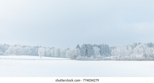 Winter scene with snow on the Dutch Posbank in national park Veluwezoom