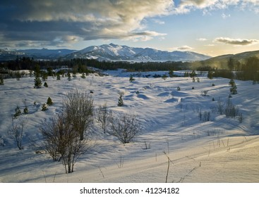 A winter scene of trees and snow north of the Arctic Circle in Norway