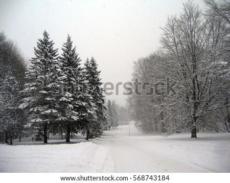 d0dfbb152874 Winter Scenery Stock Photo (Edit Now) 568743184 - Shutterstock