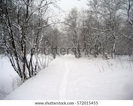 cd37e03d350f Winter Scenery Stock Photo (Edit Now) 572015455 - Shutterstock