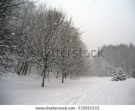 63699ba0984b Winter Scenery Stock Photo (Edit Now) 572015515 - Shutterstock