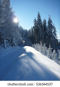 Winter scenery with cross-country ski trail