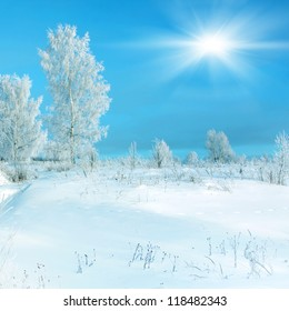 Winter scenery, hoarfrost on a trees and snowdrifts and sun