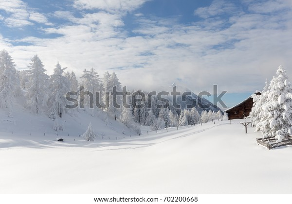 Winter scenery with snow covered trees