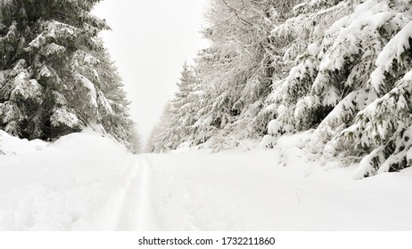 Winter scenery, thick layer of snow in the mountains, snowy trees in the forest. Hiking trail in the Sudety mountains.