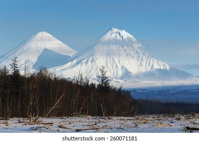 Winter scenery view on Mount Klyuchevskoy Volcano: highest active volcano in Eurasia and Kamen Volcano (Stone Volcano) on sunny day with blue sky. Kamchatka Peninsula, Klyuchevskaya Group of Volcanoes