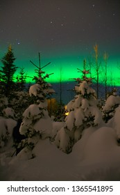 Winter scenic landscape night view of snow covered trees in forest and Aurora Borealis/Northern lights dancing on the clear sky full of stars. Beautiful winter wonderland/fairytale background scene.